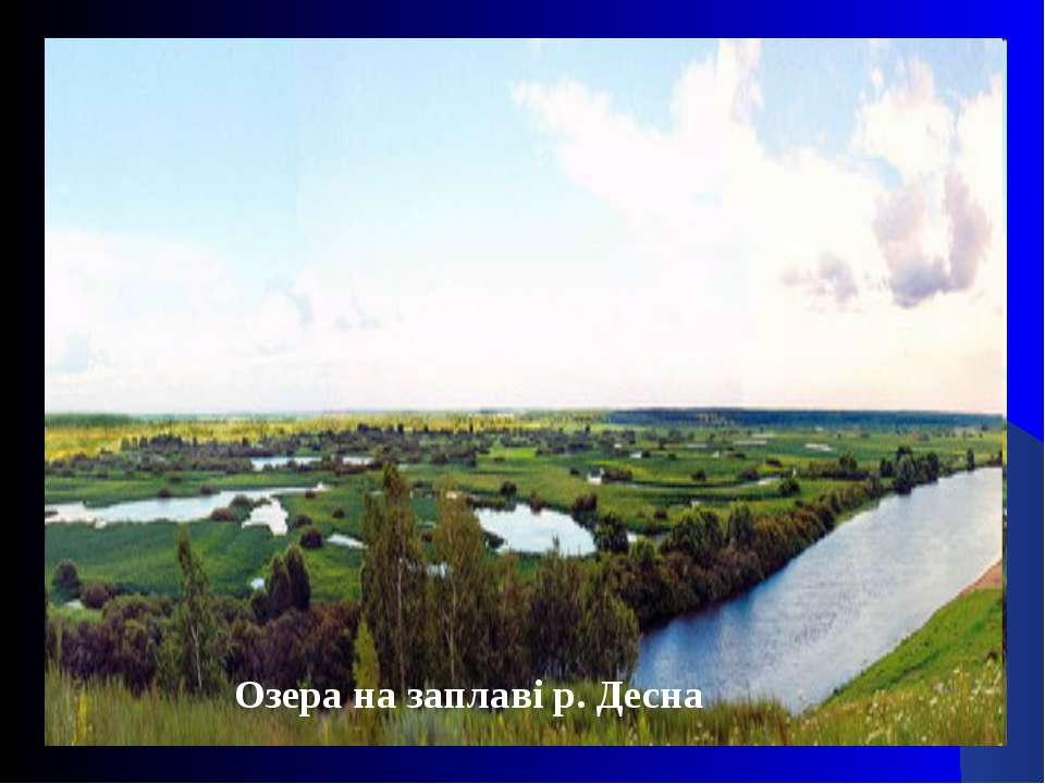 Озера на заплаві р. Десна