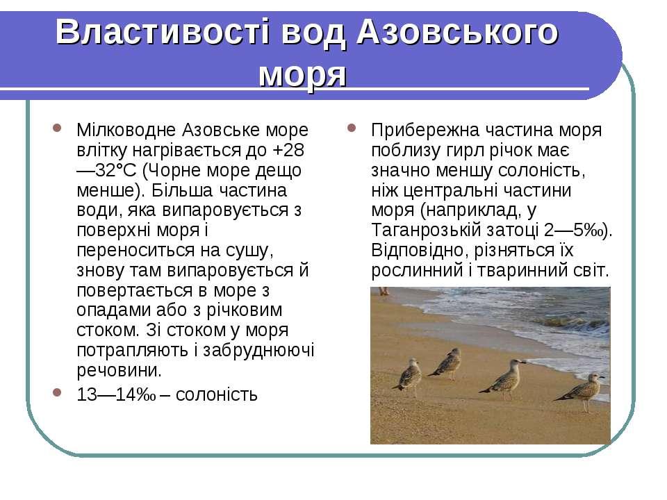 Властивості вод Азовського моря Мілководне Азовське море влітку нагрівається ...