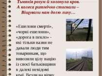 Нам в дорозі в далеку неволю Сибірський вітрище свистав, Від брутальної лайки...