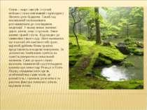 Стиль - «каре сансуй» («сухий пейзаж») тісно пов'язаний з приходом у Японію д...