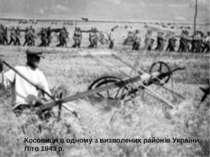 Косовиця в одному з визволених районів України. Літо 1943 р. 13