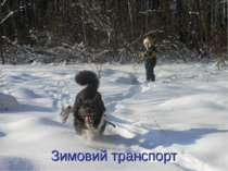 Зимовий транспорт