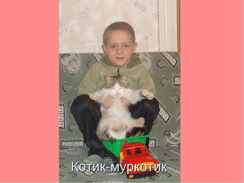 Котик-муркотик