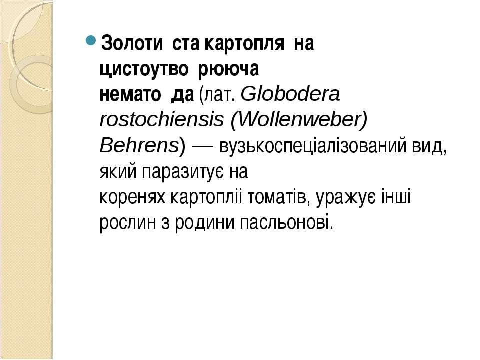 Золоти ста картопля на цистоутво рююча немато да(лат.Globodera rostochiensi...