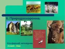 6. Природоохоронна: Біосферний заповідник Асканія - Нова
