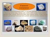 Корисні копалини Це паливно-енергетичні ресурси (нафта, газ, вугілля), марган...