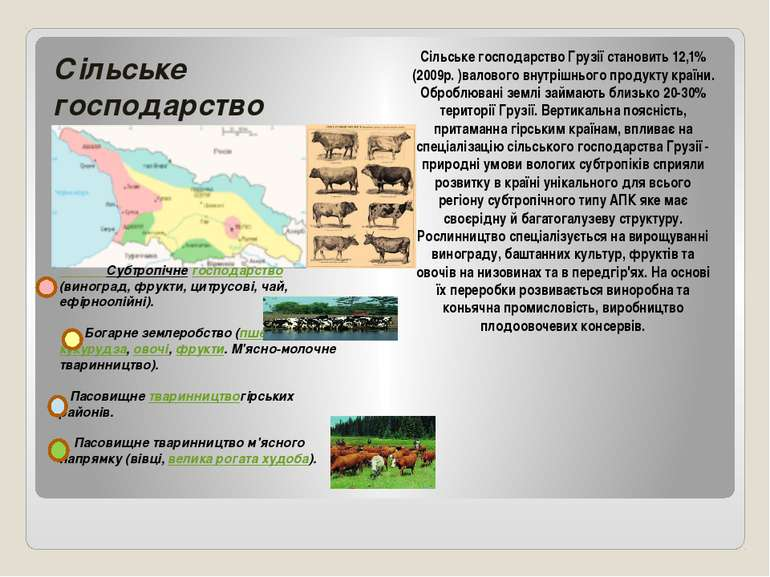 Сільське господарство Субтропічнегосподарство(виноград, фрукти, цитрусові, ч...