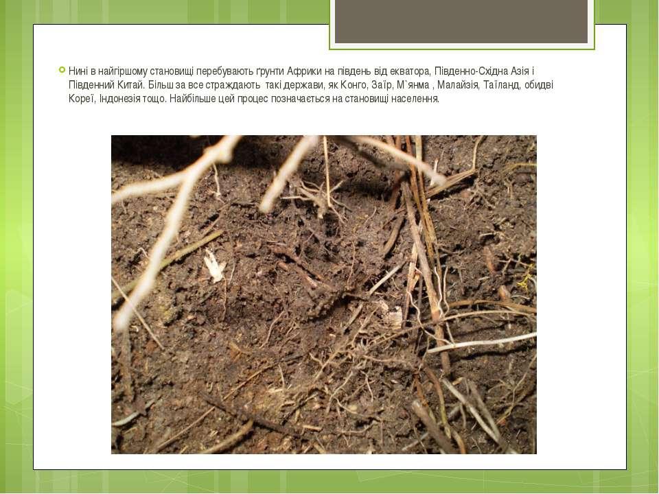 Нині в найгіршому становищі перебувають ґрунти Африки на південь від екватора...