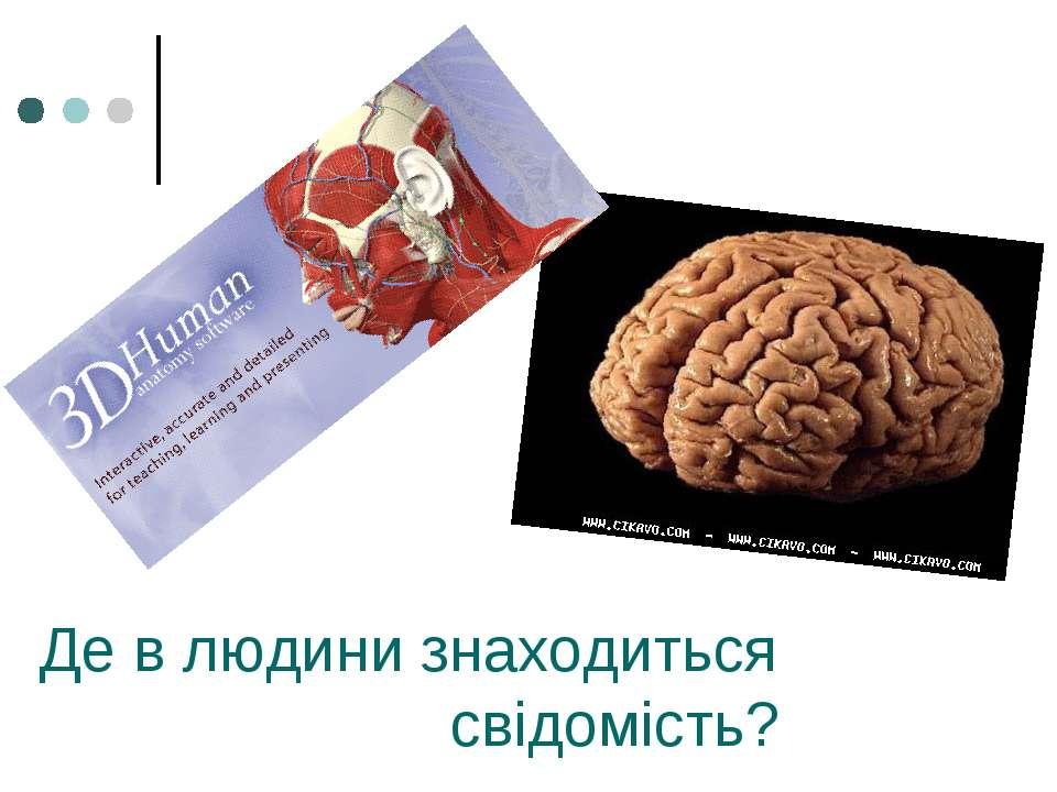 Де в людини знаходиться свідомість?