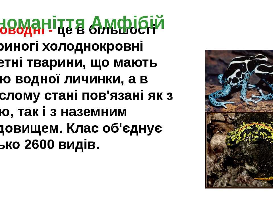 Земноводні - це в більшості чотириногі холоднокровні хребетні тварини, що маю...
