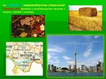 На Закарпатті запроваджують уінкальний Канадський проект з виробництво палива...