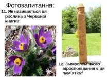 Фотозапитання: 11. Як називається ця рослина з Червоної книги? 12. Символом я...
