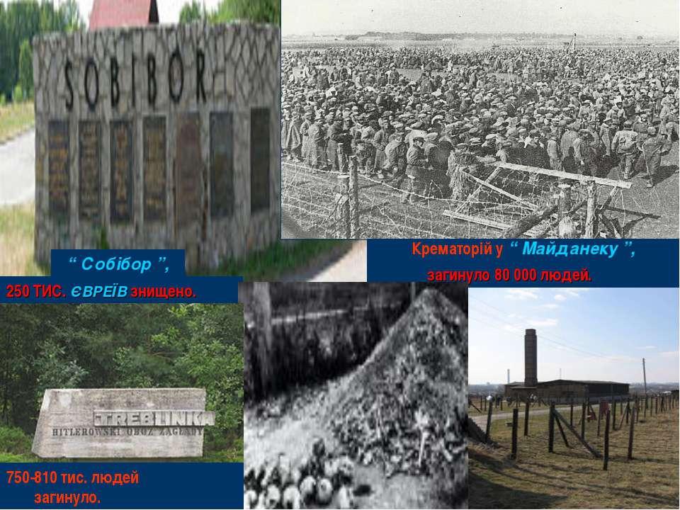 """"""" Собібор """", Крематорій у """" Майданеку """", 250 ТИС. ЄВРЕЇВ знищено. загинуло 80..."""