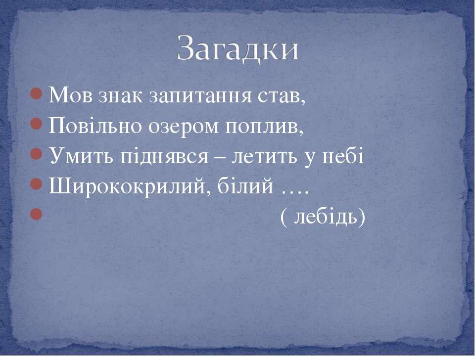 Мов знак запитання став, Повільно озером поплив, Умить піднявся – летить у не...