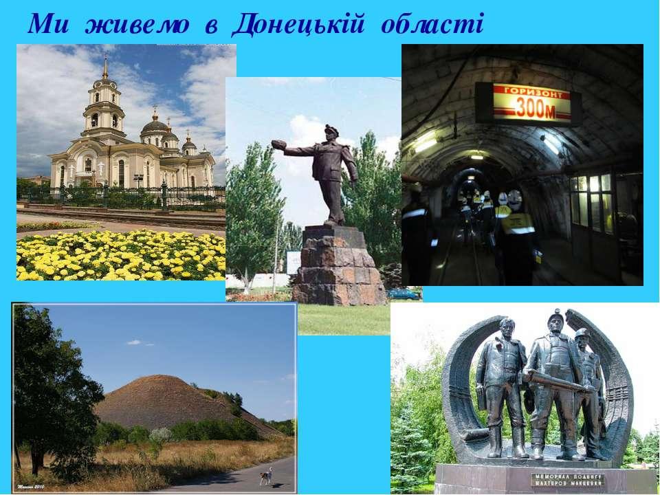 Ми живемо в Донецькій області
