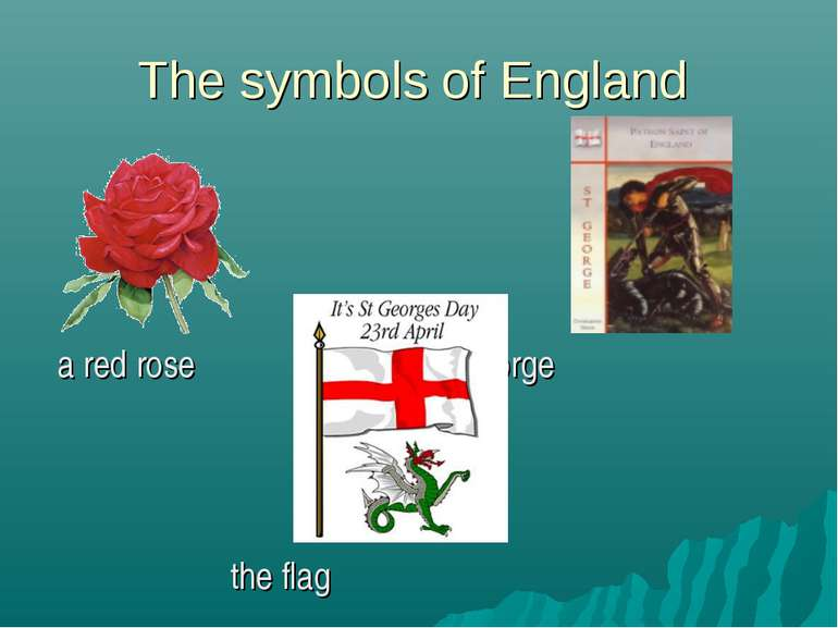 The symbols of England a red rose Saint George the flag