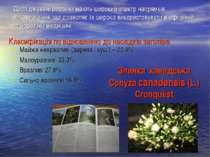 Досліджувані рослини мають широкий спектр напрямків використання, що дозволяє...