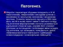 Патогенез. Мікроби і паразитарні збудники попадають в Ж.М гематогенним, лімфо...