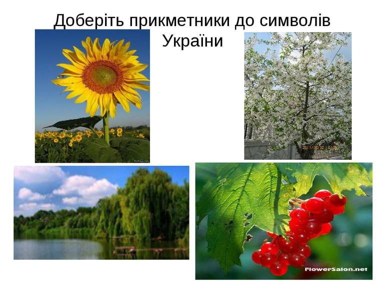 Доберіть прикметники до символів України