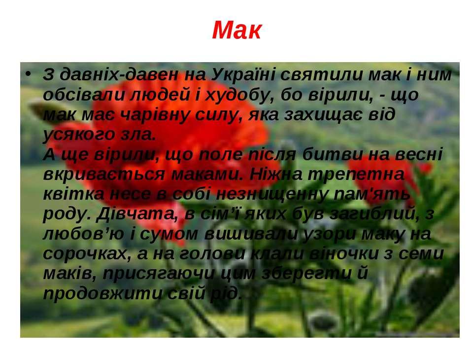 Мак З давніх-давен на Україні святили мак і ним обсівали людей і худобу, бо в...
