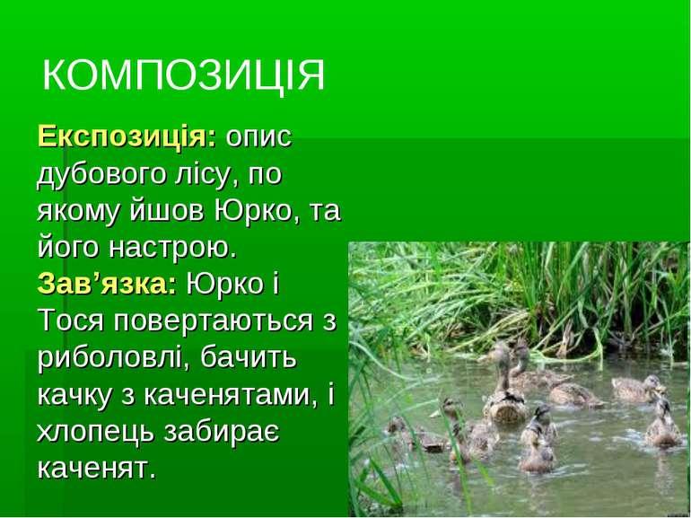 КОМПОЗИЦІЯ Експозиція: опис дубового лісу, по якому йшов Юрко, та його настро...