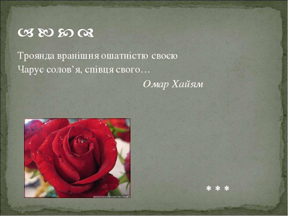 Троянда вранішня ошатністю своєю Чарує солов'я, співця свого… Омар Хайям