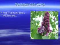Мов із квітами візок, Фіолетовий... Загадки про квіти