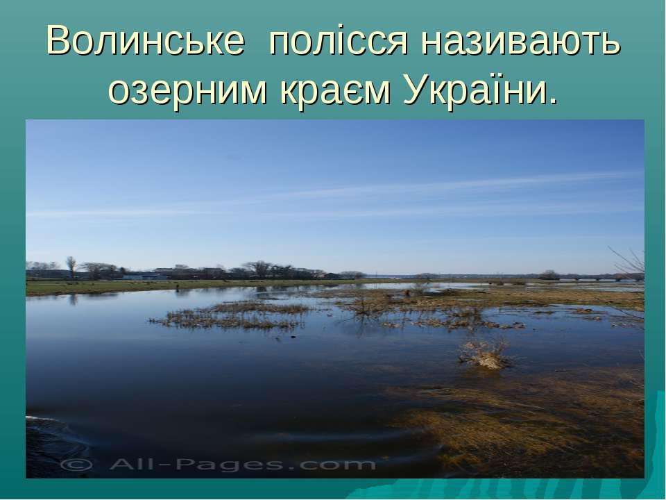 Волинське полісся називають озерним краєм України.