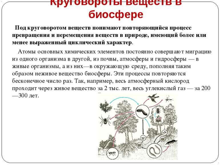 Круговороты веществ в биосфере Под круговоротом веществ понимают повторяющийс...