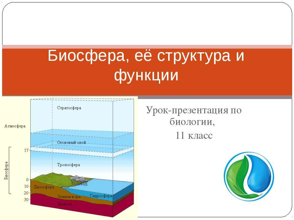 Урок-презентация по биологии, 11 класс Биосфера, её структура и функции