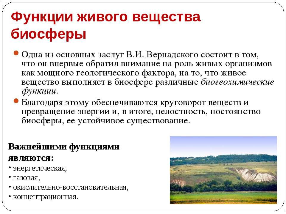 Функции живого вещества биосферы Одна из основных заслуг В.И. Вернадского сос...