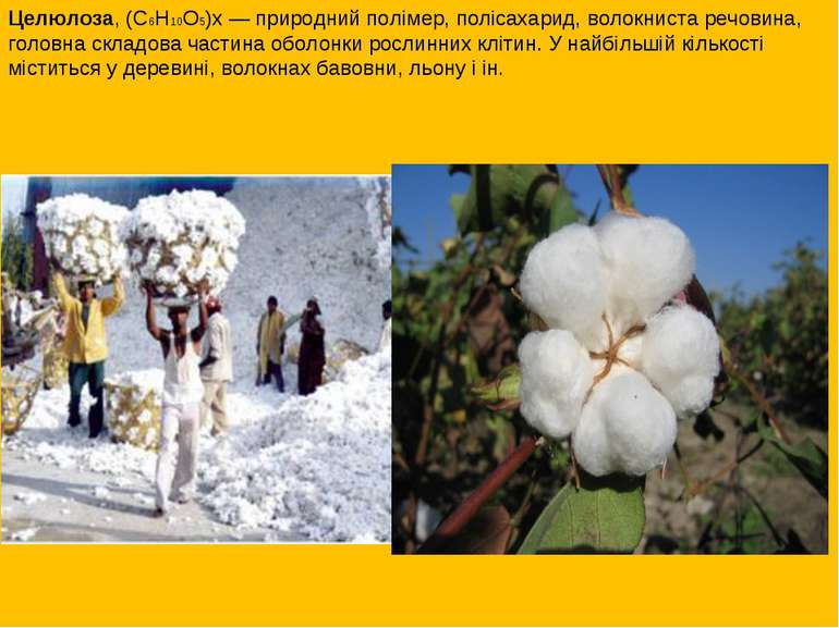 Целюлоза, (С6Н10О5)x— природний полімер, полісахарид, волокниста речовина, г...