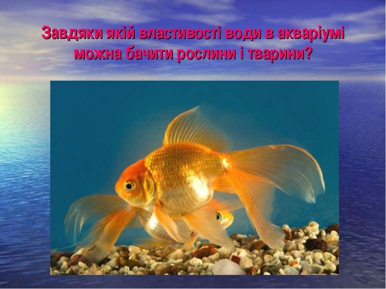 Завдяки якій властивості води в акваріумі можна бачити рослини і тварини?