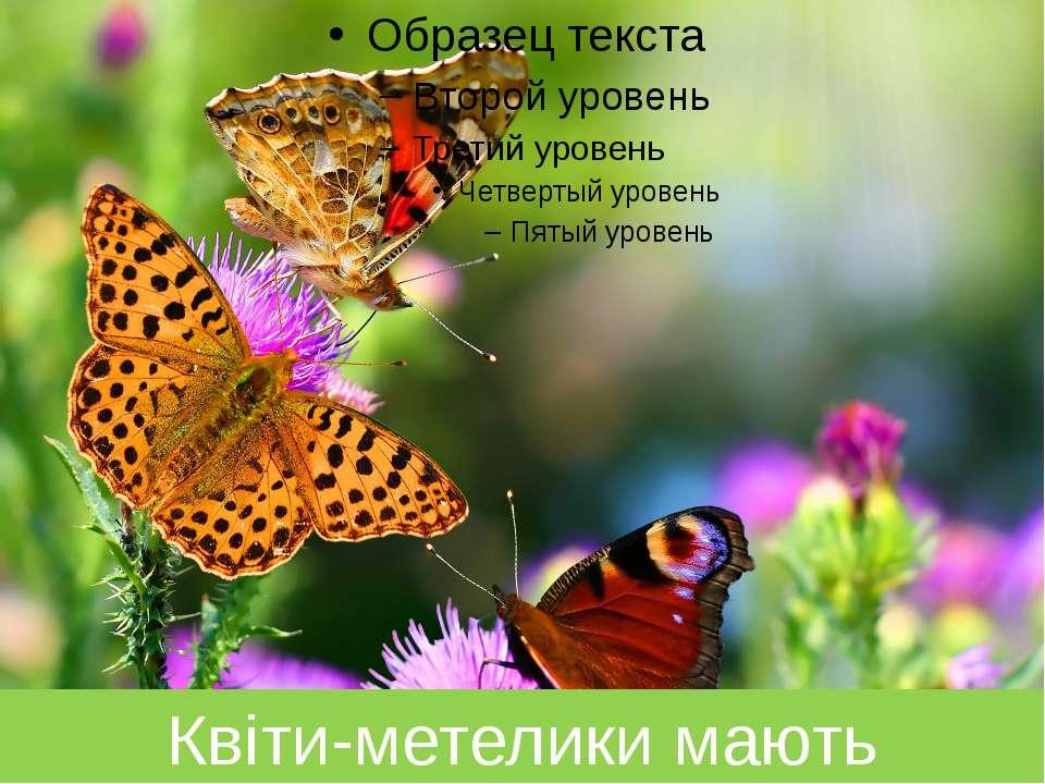 Квіти-метелики мають крильми…