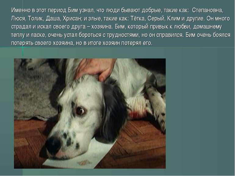 Саме в цей період Бім дізнався, що люди бувають добрі, такі як: Степанівна, Л...