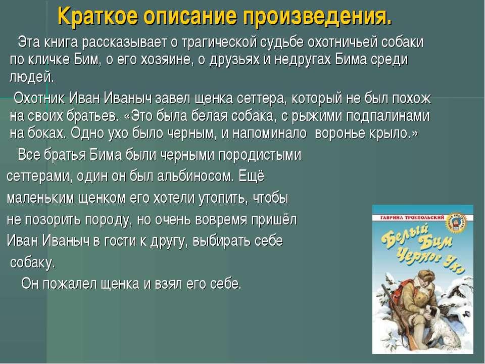Короткий опис твору. Ця книга розповідає про трагічну долю мисливської собаки...