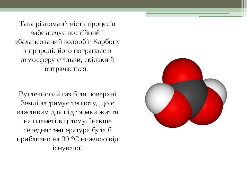 Така різноманітність процесів забезпечує постійний і збалансований колообіг К...