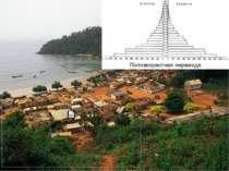 Половозрастная пирамида