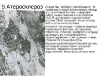 9.Атеросклероз Стадія №2, ліпоїдоз (експеримент). В інтимі аорти видні вільно...
