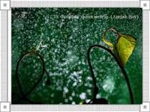 33. Фабрика фотосинтезу. (Aimish Boy)