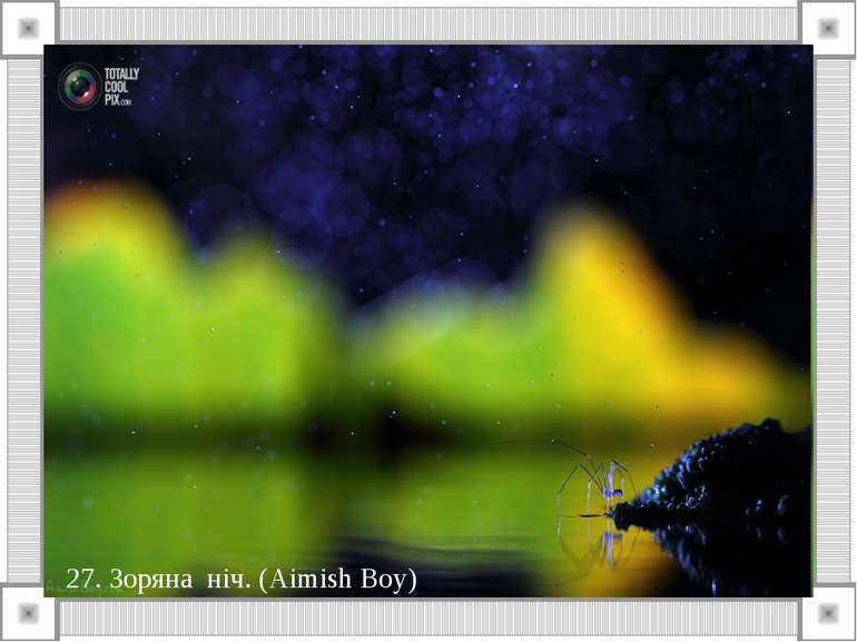 27. Зоряна ніч. (Aimish Boy)