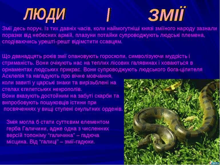 Змії десь поруч. Із тих давніх часів, коли наймогутніші князі зміїного народу...