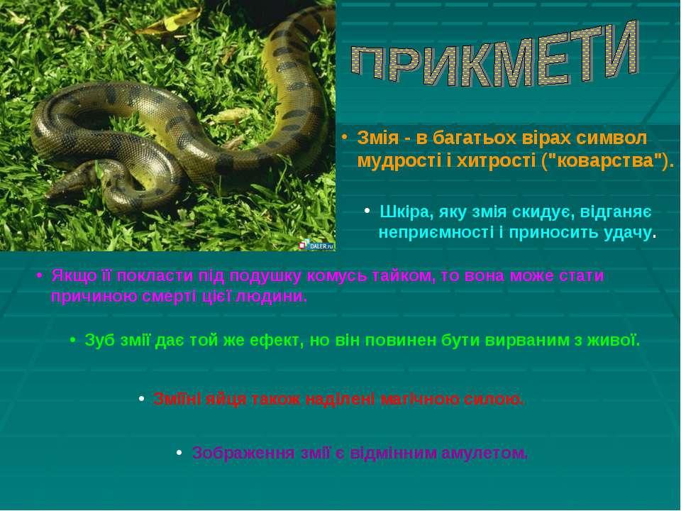 """Змія - в багатьох вірах символ мудрості і хитрості (""""коварства""""). Шкіра, яку ..."""