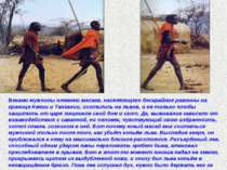 Веками мужчины племени масаев, населяющего бескрайние равнины на границе Кени...