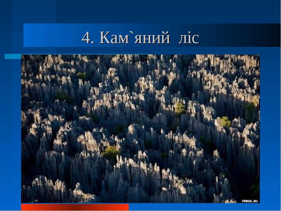 4. Кам`яний ліс