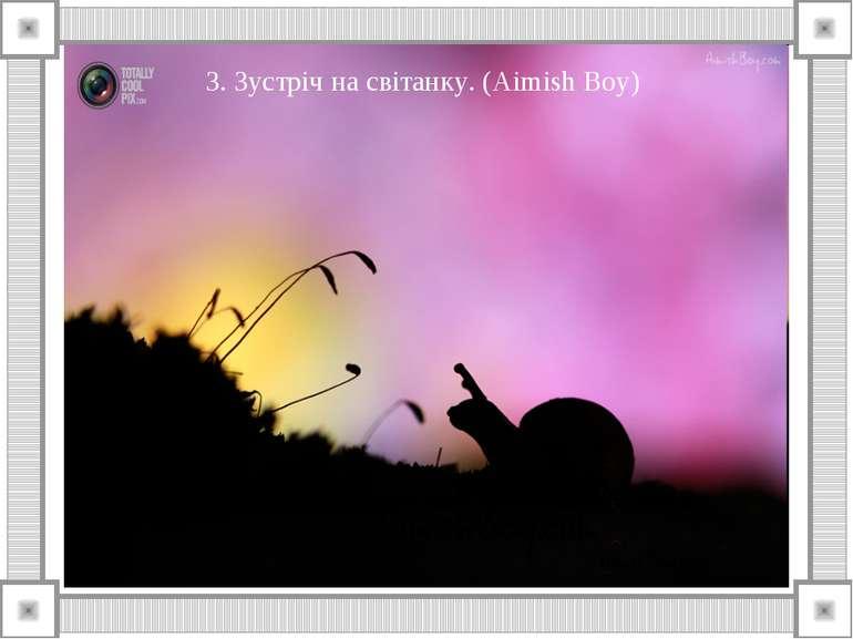 3. Зустріч на світанку. (Aimish Boy)