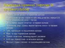 Локалізація первинної сифіломи та супутнього бубону Чоловічі статеві органи –...