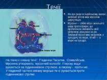 Течії На рух води в Індійському океані великий вплив має мусонна циркуляція. ...