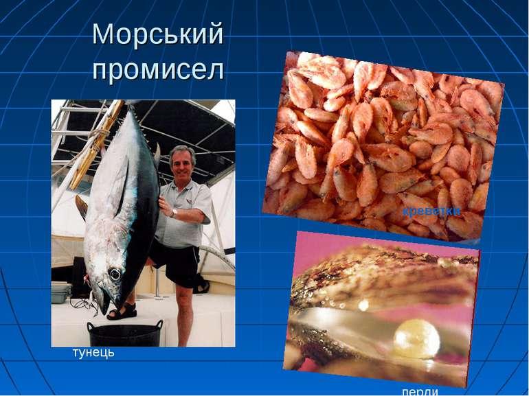 Морський промисел тунець перли креветки