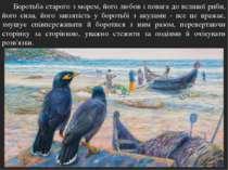 Боротьба старого з морем, його любов і повага до великої риби, його сила, йог...